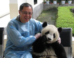 DLO office moving experts - Michael Wan with a panda